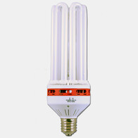CFL 150w Lamp (Red)