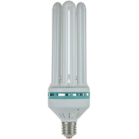 CFL 150w Lamp (Blue)