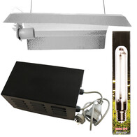 600w Basic Lighting Kit