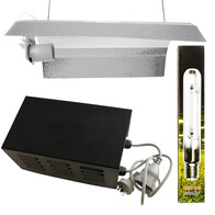 400w Basic Lighting Kit